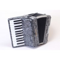 Stephanelli 12 Bass Accordion - Perloid Grey